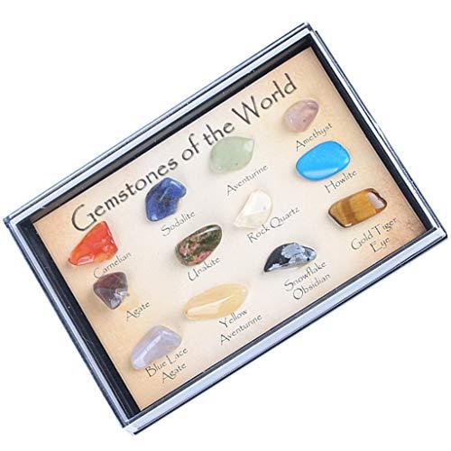 F Fityle Colección de Rocas Y Minerales Juguete Educativo de Ciencia de Geología para Adultos - Paquete de 15