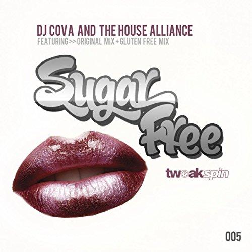 Sugar Free (Gluten Free Mix)