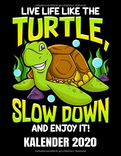 Live Life Like The Turtle Kalender 2020: Lustiger Schildkröten Kalender Terminplaner Buch - Jahreskalender - Wochenkalender - Jahresplaner