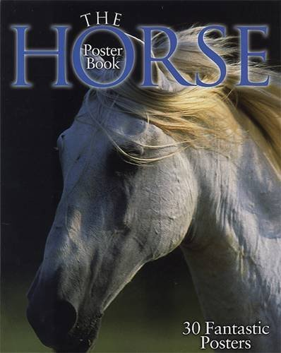 The Horse Poster Book (Not a Series) by Wendy Allatson (2005-11-01)