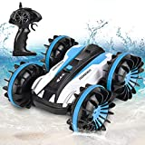 GotechoD Remote Control Car for Boys, Offroad RC Car 4x4 RC Truck Waterproof Remote Control Truck Stunt Car Radio Controlled Vehicle RC Electric Cars for Boys Toys 5-16 Years Old Kids Gift Blue