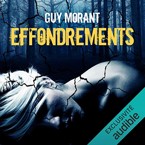 Couverture de Effondrements