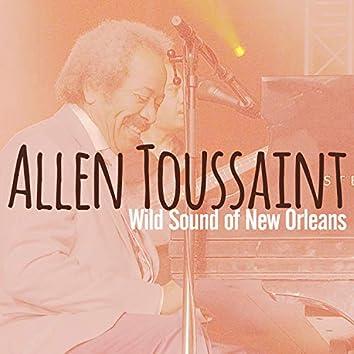 Wild Sound of New Orleans