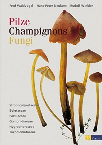 Pilze, Champignons, Fungi, Bd.1, Strobilomycetaceae, Boletaceae, Paxillaceae, Gomphidiaceae, Hygrophoraceae, Tricholomataceae