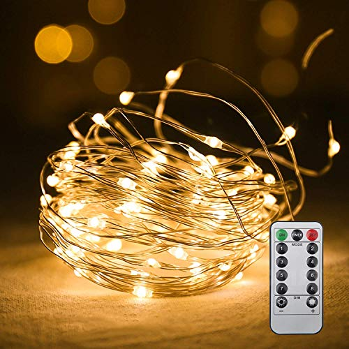 VEYLIN LEDイルミネーションライト クリスマス 飾り 装飾 防水 防塵 屋外 室内 新年 誕生日 結婚式 学園祭8種類の点灯モード 正月 リモコン付 100球 10m (電池式)