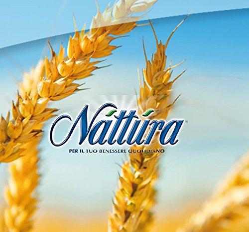 Nattura Mix di Riso Integrale Parboiled, Grano Saraceno, Quinoa Rossa, Amaranto e Semi di Lino Fonte di Ferro e Magnesio - (4 x 400 Gram)