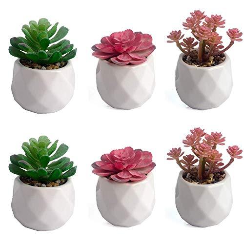 Unishop Set de 6 Plantas Suculentas Artificiales, Cactus Pequeños con Macetas, Plantas Decorativas Falsas para Interior (Blanco)