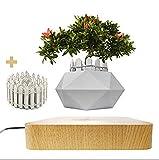 JU&MU Magnetic Levitation Air Bonsai Pot, Creative Mini Sky-Garden Rotating Flower Pot Planter, for Desk Decoration and Gifts (Light Wood)