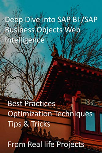 Deep Dive into SAP BI /SAP Business Objects Web Intelligence: Best Practices, Optimization Techniques, Tips & Tricks from Real life Projects (English Edition)