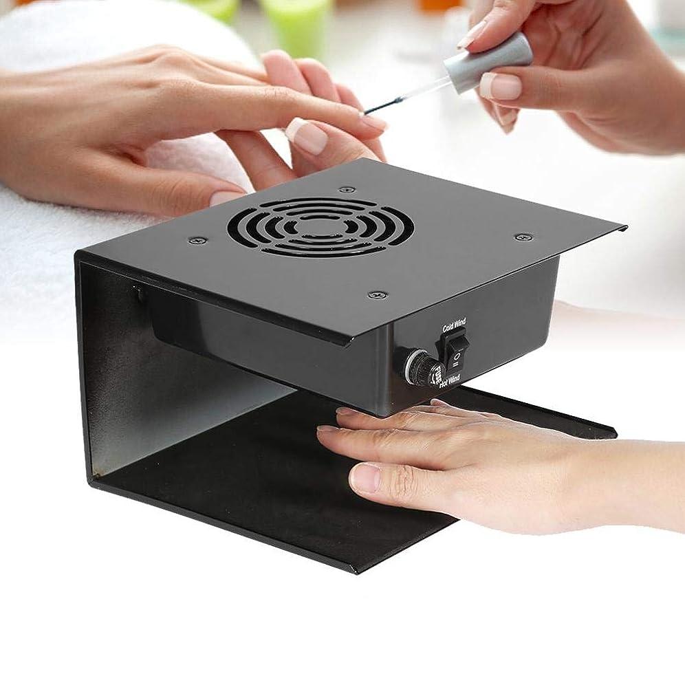 好きであるコール暖かく300W ネイルドライヤー ホット&コールド ファン 強力 速乾 過電保護 手/両手を乾かす (EUプラ グ 変換プラグなし)