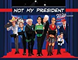 Not My President Calendar 2020