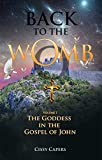 Back To The Womb: The Goddess in the Gospel of John (Volume I) (English Edition)