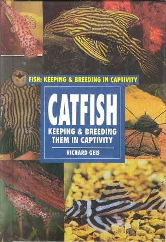 Catfish (Fish and Aquariums)
