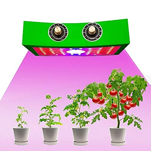 DECHLT 1000 Watt Grow Light,Convenient Control,Double Chips &Dimmable Full Spectrum Grow Light for Indoor Plants Led Growing Light for 2x4ft Coverage,Best Cob Led Grow Lights