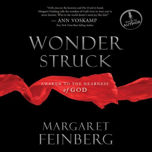 Wonderstruck audiobook cover art