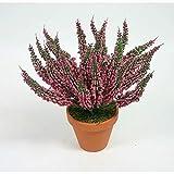 Erika 28cm dunkel-rosa -ohne Topf- DP Kunstpflanzen Kunstblumen Erikabusch künstliches Heidekraut künstliche Blumen Pflanzen Blühpflanze