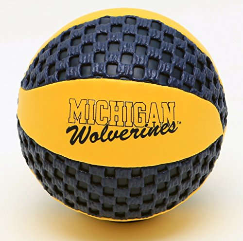 Affordable fun gripper Michigan Wolverines 5.5 Mini Basketball NCAA