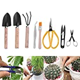 sincerely gift Bonsai Tool Set, Bonsai Trimming Tools Kit Succulent Gardening Tools Set