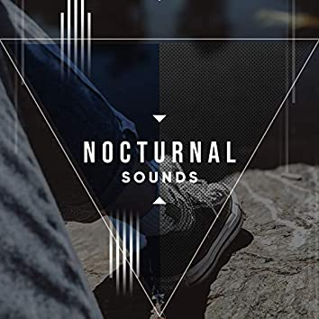 Nocturnal Sounds