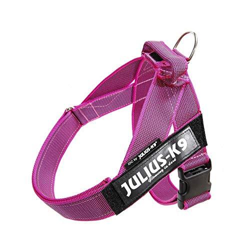 JULIUS-K9, 16IDC-0-PN-2015, Color&Gray IDC-Gurtbandgeschirr, Größe 0, pink-grau