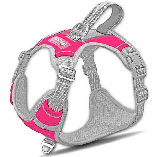 IPETSZOO Dog Harness for Large Dogs No Pull,Easy Walk Harness,3M Reflective No-Choke Dog Vest,Adjustable Soft Padded Pet Vest with Control Handle for Medium Large Dogs(Pink,XL)