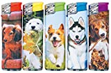 Fzg Elektronikfeuerzeug Motiv Nette Hunde kindergesichert 1 Display (enthält 50 Feuerzeuge)