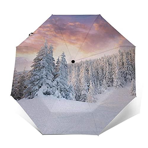Paraguas Plegable Automático Impermeable Paisaje Invernal Campos nevados Frozen, Paraguas De Viaje...