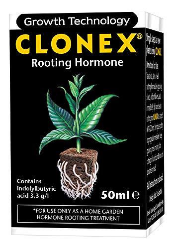 Clonex Fettorifero (ormone di radicamento)