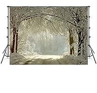 8x8ftの白い雪に覆われた森林道の写真の背景に折り目がない冬の写真の背景