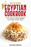 The Ultimate Egyptian Cookbook: 111 Dishes from Egypt To Cook Right Now