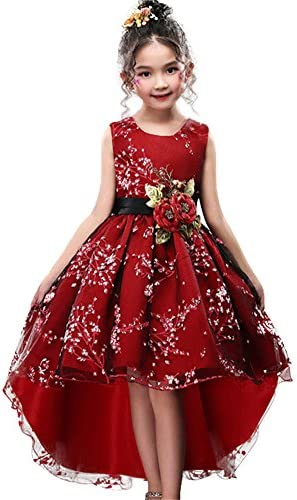 WEONEDREAM Girls Dresses for Kids Party Graduation Age of Size 9 10 Tea Length Sleeveless Lace product image