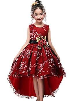 WEONEDREAM Ball Gowns for Princess Size 3T-4T High Low Flower Girl Dresses for Girls Beauty Cute Knee Long Train Sleeveless Little Baby Children Girl Dress Tulle Satin  PBurgundy 110