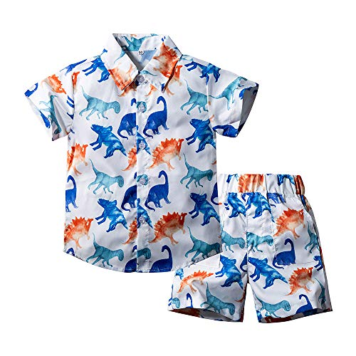 Toddler Baby Boy Shorts Sets Hawaiian Outfit,Infant Kid Leave Floral Short Sleeve Shirt Top+Shorts Suits Set (White Dinosaur, 4-5 T)
