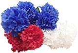 Red, White and Blue Floral Garden Patriotic Flower Bushes, 16.25 in. (Carnations)