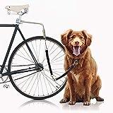 Bella & Balu Correa Perro para Bicicletas | Correa para bicicleta incl. Fijación para el sillín, espaciador, muelle de bobina, correa, reflectores y guía corta – Para un ciclismo seguro con su perro