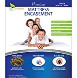 Four Seasons Essentials Queen Mattress Protector Bedbug Waterproof Zippered Cover Hypoallergenic Premium Quality Encasement Protects Against Dust Mites Allergens