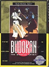 Martial Arts Video Game