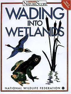Wading Into Wetlands