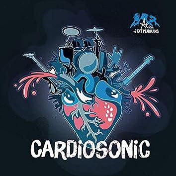Cardiosonic