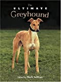 The Ultimate Greyhound...