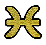 RECHERE 12 Constellation Symbols Zodiac Embroidered Iron On Patch Applique (Pisces)