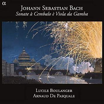 Bach: Sonate à Cembalo è Viola da Gamba