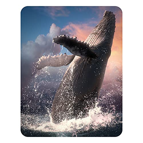 3D LiveLife Magnet - Whale Jump from Deluxebase. Lenticular 3D Ocean Fridge Magnet. Magnetic decor for kids and adults with artwork licensed from renowned artist, David Penfound