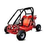 6-12 Years Old 110cc Red Go Kart 2 Seater Gas Powered Off-Road Go Cart for Kids and Youths