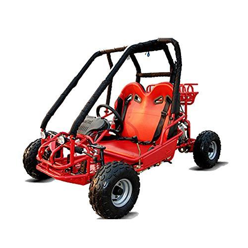 6-12 Years Old 110cc Go Kart 2 Seater Gas Powered...