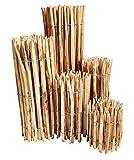 Staketenzaun Haselnuss - 90 x 500 cm (Lattenabstand 7-9 cm) - Roll-Zaun mit gut gespaltenen Staketen - Natur Haselnusszaun als Gartenzaun oder Teichumrandung