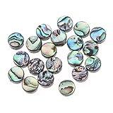 Healifty 20 Stück Abalone-Muschel-Perlen zur Schmuckherstellung, Perlen für selbstgemachte...