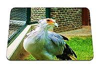 26cmx21cm マウスパッド (鳥の羽の色光) パターンカスタムの マウスパッド
