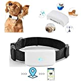 Pet Tracker with Collar, Pet GPS Tracker for Big Dog, Anti- Lost Dog