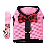 RC GearPro Rabbits Harness with Elastic Leash Suitable for Small Pets Cat Guinea Pig Chest Strap Set (M : Bust (30-34cm), Pink)